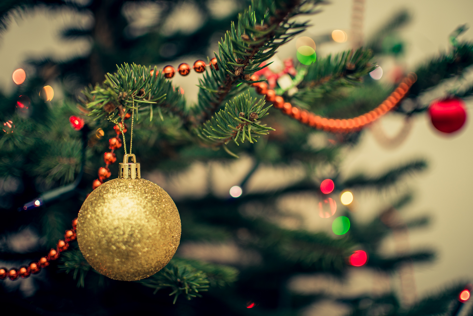 when should i put my christmas tree up - When To Put Up Christmas Tree